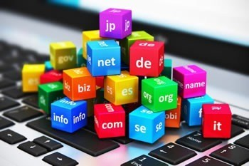 Web Hosting And Domain Name Cost 1