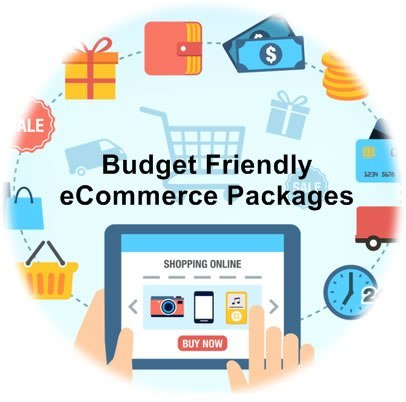 Budget Friendly E Commerce Packages