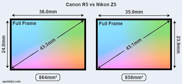2020 Nikon vs Canon Mirrorless Full Frame DSLR Battle 12